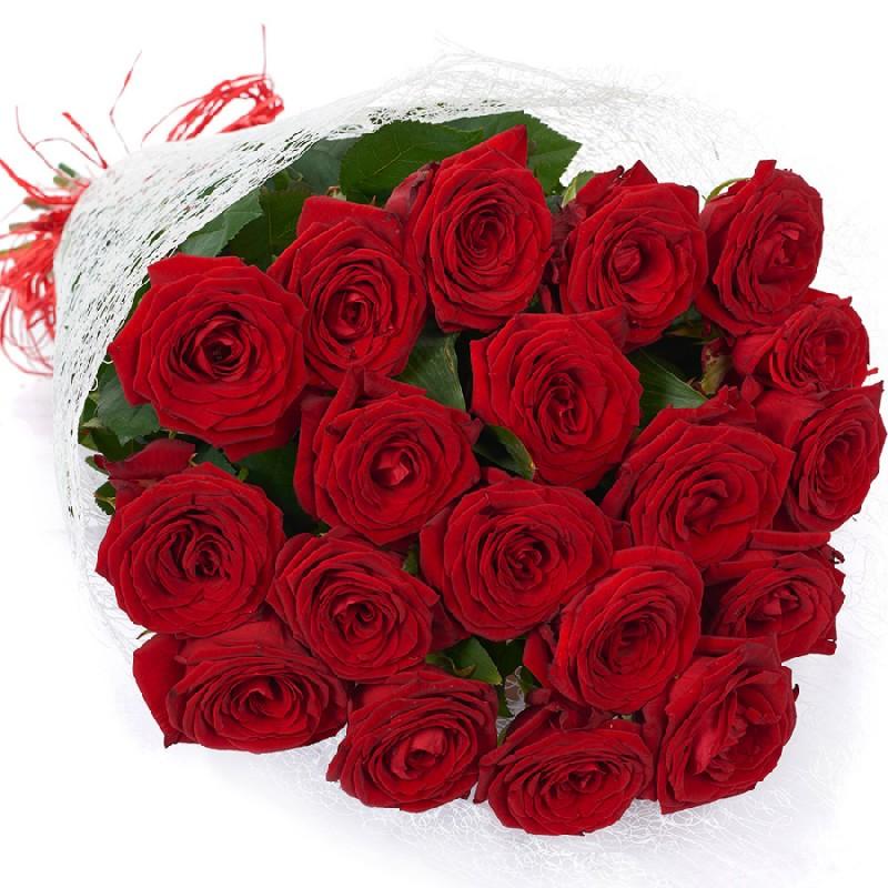букет алых роз цветов картинки для